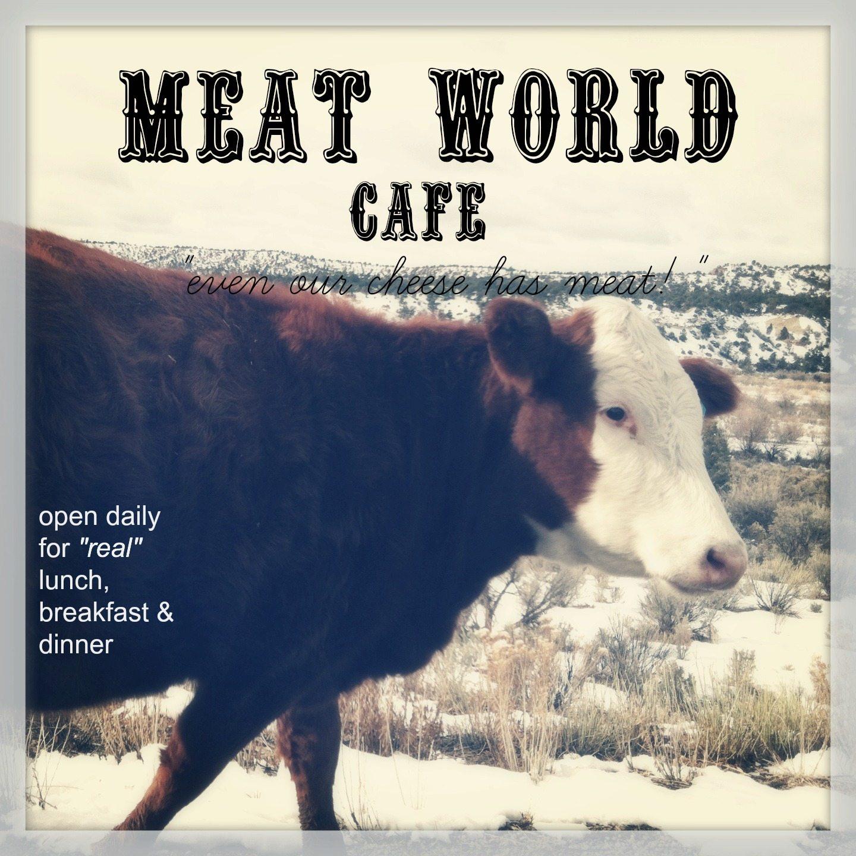 photo of cow
